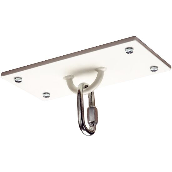 Ceiling Mount with Half Ring