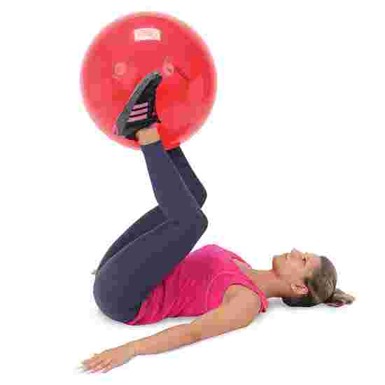 Gymnic Exercise Ball ø 55 cm