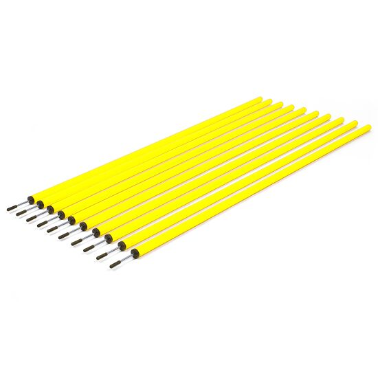 Set of Slalom Poles Without spring joint