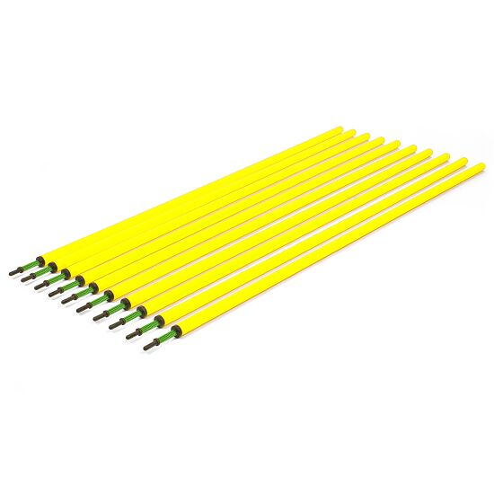 Set of Slalom Poles With spring joint