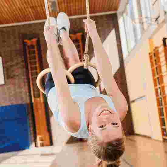 Sport-Thieme Gym and Swing Set for Sports Halls