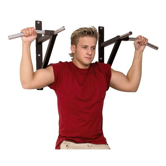 Wall-Mounted Pull-Up Bars
