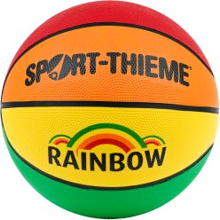 "Sport-Thieme ""Rainbow"" Basketball"