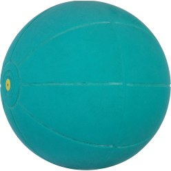 WV® Medicine Ball – The Original!