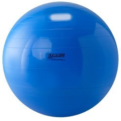 Gymnic Exercise Ball ø 75 cm