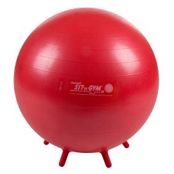 Sit 'n' Gym Sitting Ball