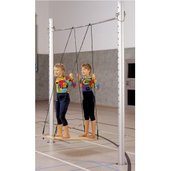 Parallel Bars Swing