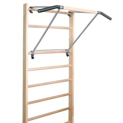 "Sport-Thieme with ""Premium"" Pull-Up Bar Wall Bars"