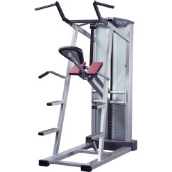 Schnell Pull-Up & Dip Machine