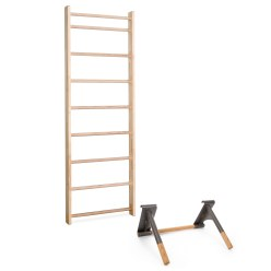 Sport-Thieme® Wall Bars with Pull-Up and Dip Bar