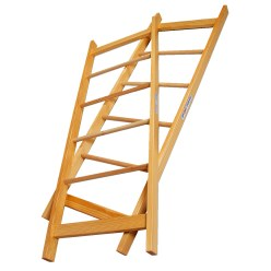Sport-Thieme Pair of Acrobatics Ladders