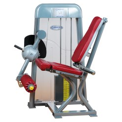 Ergo-Fit Leg Extension 4000