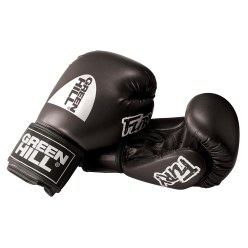 "Green Hill ""Fury"" Boxing Gloves"