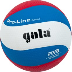 "Gala ""Pro Line"" Volleyball"