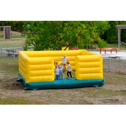 """Jumpy"" Bouncy Castle"