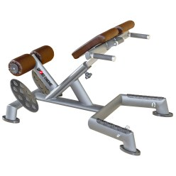 "Sport-Thieme ""OV"" Back Extension Bench"
